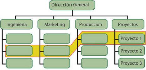 Estructuras matriciales y su liderazgo